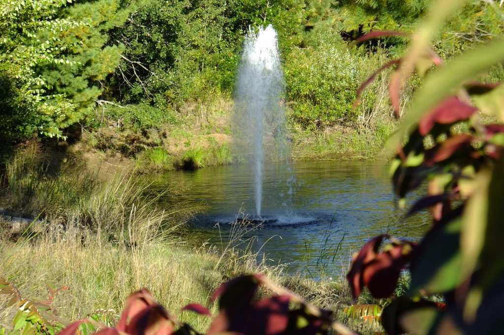 You can use fountains in shallow ponds to improve oxygen levels
